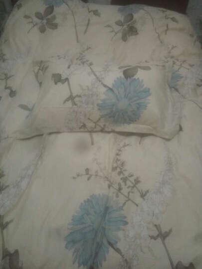 南极人四件套纯棉床上用品全棉床品套件1.8m床单被套三件套 【上新款】锦鲤 晒单图