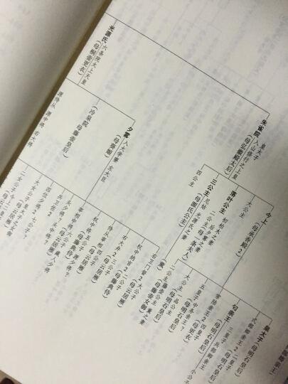 中国翻译家译丛:丰子恺译源氏物语(套装上下册) 晒单图
