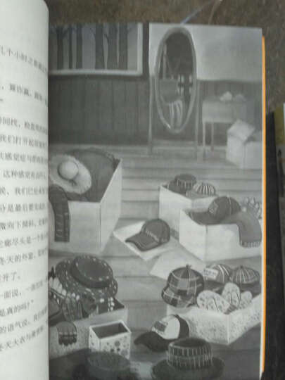 长青藤国际大奖小说书系第三辑6册 芒果猫作文里的奇案 妖精的小孩 枫树山的奇迹少儿童文学书 晒单图