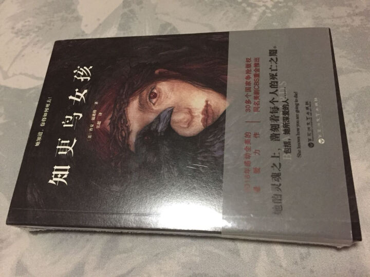 【正版书籍】知更鸟女孩 (美)查克温迪格外国小说情感言情媲美《偷影子的人》《忽然七日》 晒单图