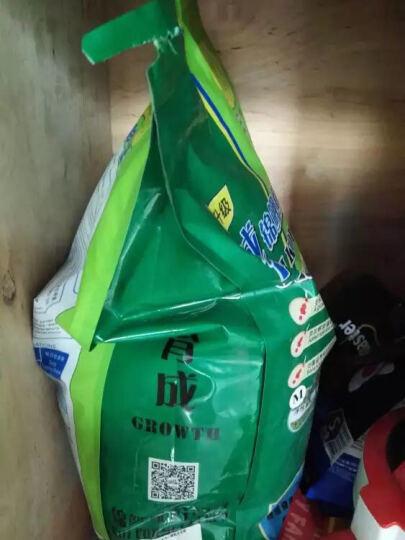 彩锦王(KOIKING)鱼粮中大型鱼食锦鲤螺旋藻配方鱼饲料上浮型5kg(3.5mm) 晒单图