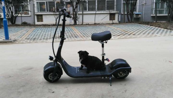 HIMIWAY 蛋蛋 哈雷电动车 折叠电动滑板车摩托车电动自行车电瓶车代步车 折叠黑色 晒单图