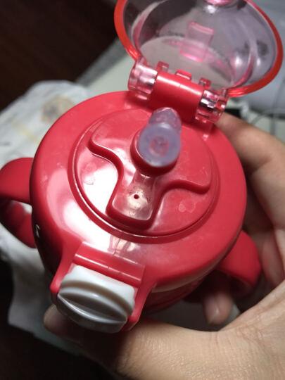 babycare儿童保温杯带吸管婴儿水杯学饮杯316不锈钢宝宝保温杯 柠红240ml 晒单图