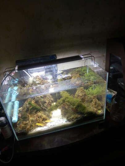 森森鱼缸灯LED水草灯架草缸灯水族箱灯具照明灯架藻缸灯LED支架灯 ADS-900C 80W适合98-1115cm 晒单图