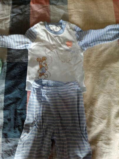 迪士尼宝宝(Disney baby)儿童内衣棉毛布秋衣秋裤长袖肩开套装DA632AE05V2880浅豆绿 80码 晒单图
