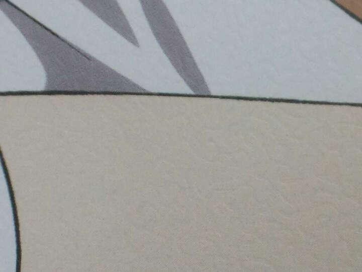 宅萌玩具火影忍者 东京食尸鬼 盗墓笔记 海贼王 动漫海报42*29cm一套8张 lovelive 晒单图