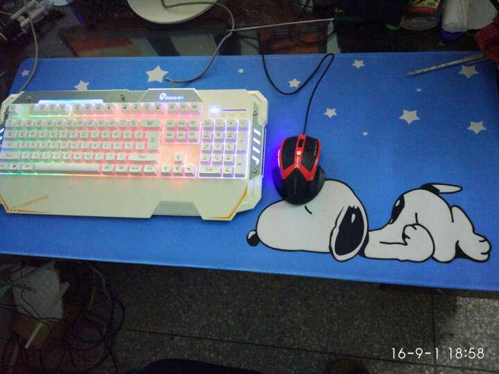 动漫鼠标垫 大号 锁边加厚 动漫可爱鼠标垫创意 游戏卡通电脑办公键盘桌垫 游戏周边 80x30 要么瘦要么死 晒单图