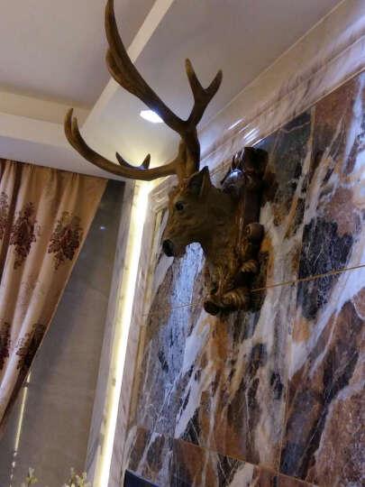 尚凡 鹿头壁挂壁饰 欧式客厅办公室玄关书房工艺品摆件 美式创意复古家居装饰品 酒吧墙壁墙饰挂件 大号棕褐色 晒单图