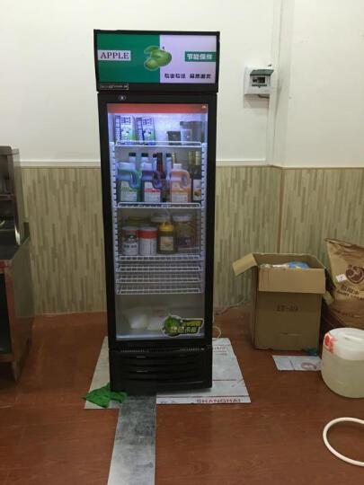 乐创(lecon) 啤酒展示柜冷藏立式冰柜商用冰箱饮料饮品保鲜单门双门三门冷柜水果鲜花点菜 绿黑色单门 直冷 晒单图