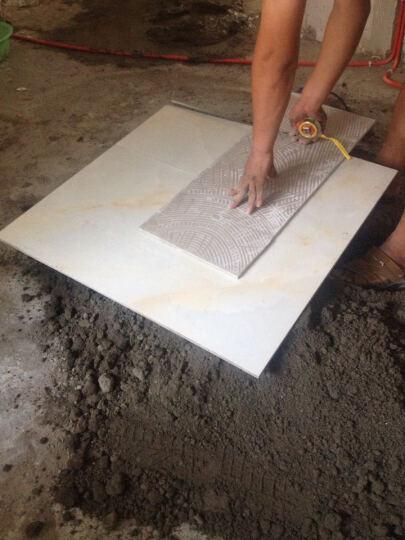东鹏瓷砖客厅地砖卧室大地板砖全抛釉砖臻皇玉磁砖现代简约 EFG20001 800*800 晒单图