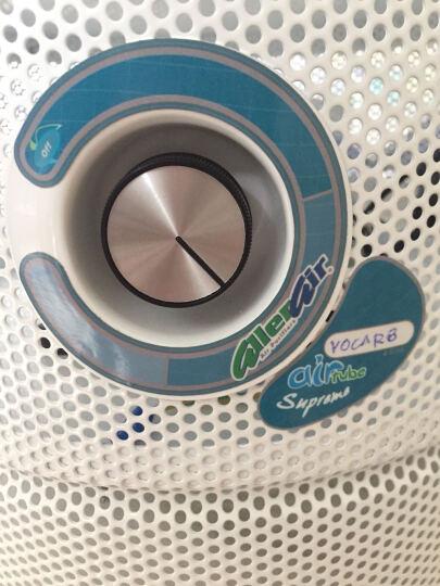 Allerair欧乐家用除甲醛空气净化器杀菌除甲醛雾霾室内儿童房原装进口AirTubeSV 白色 晒单图