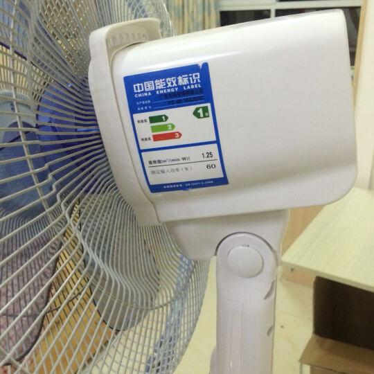 志高(CHIGO)FS-40-16A26RC 电风扇/炫彩五扇叶遥控落地扇 晒单图