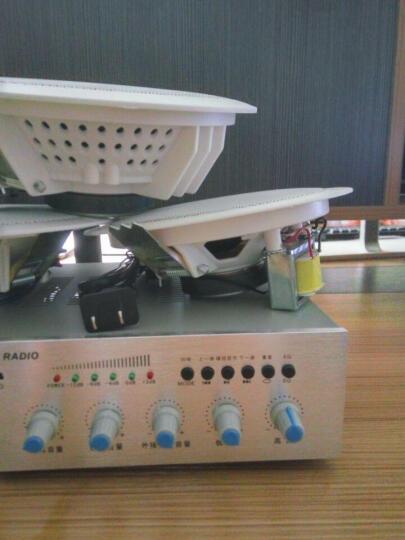 誉恩 LB-T10 室内天花音响 吸顶喇叭功放套装 吊顶音响 背景音乐公共广播系统 晒单图