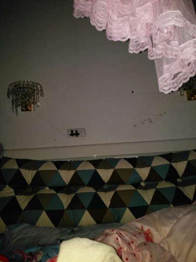 初美家纺床头靠枕靠垫 双人床头软包榻榻米靠垫 沙发靠背护腰床上三角大靠垫 蔬菜果园 长120宽20高50cm 晒单图