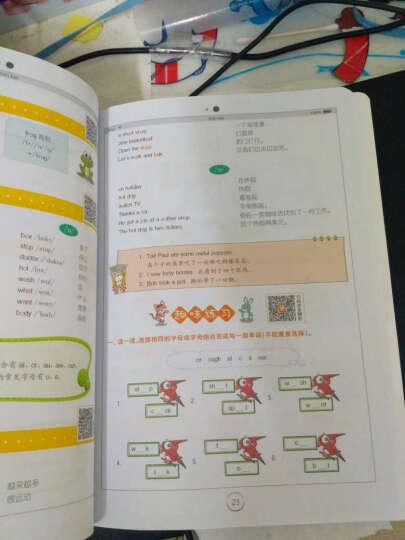 星火英语 小学英语基础知识(小学生必备)彩图版 晒单图