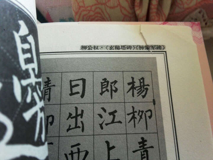 中国书法培训教程:柳公权楷书教程(玄秘塔碑神策军碑)(最新修订版) 晒单图