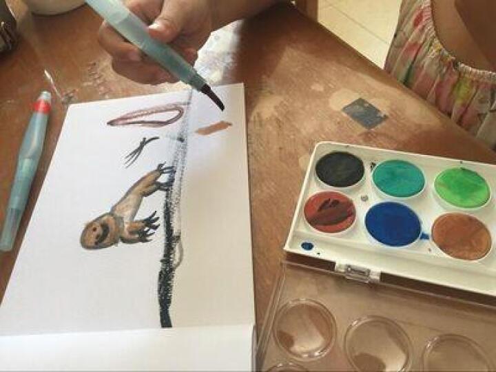雄狮儿童粉饼透明固体水彩颜料套装  12/16/28/36色水粉画颜料填色套装 36色 送水彩笔1支 单盒 晒单图
