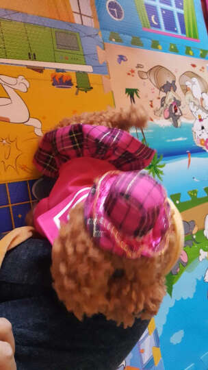 蓓茹儿 儿童电动玩具狗狗走路会唱歌仿真狗遥控机械狗牵绳毛绒小狗泰迪 公主蓝色(送礼包)48首(可调节音量) 晒单图