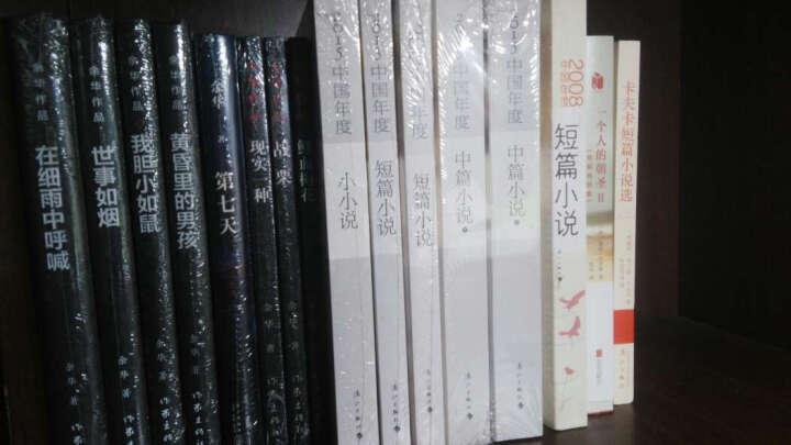 2015中国年度中篇小说(套装上下册) 晒单图