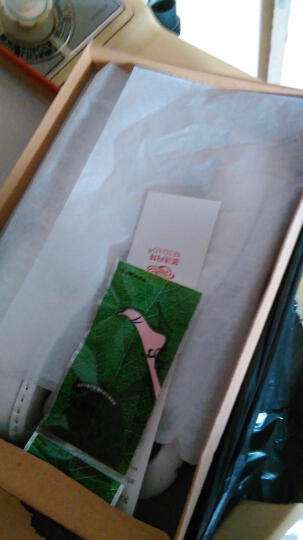 圣诗丹特真皮护士鞋气垫白色单鞋透气夏季舒适女鞋轻便中跟学院鞋软底工作鞋 白色5757 38 晒单图