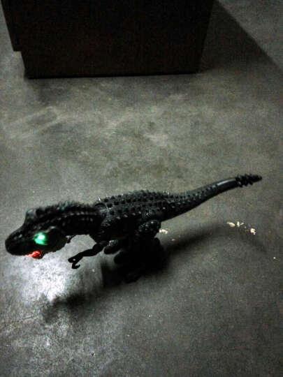 融凯仿真恐龙玩具 大号霸王龙 声光电动玩具 可动的暴龙恐龙世纪 动物玩具模型 男孩儿童玩具 棕色霸王龙 晒单图