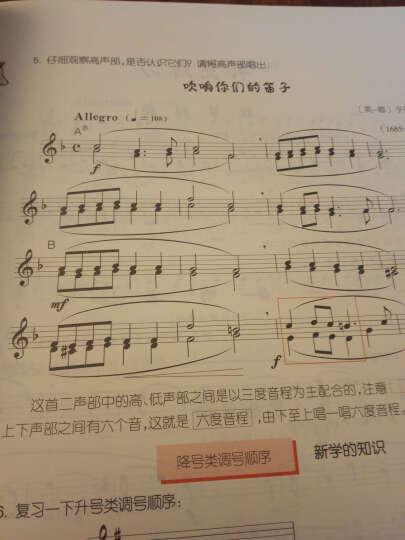 全国音乐等级考试音乐基础知识:乐理·视唱练耳分册(中级) 晒单图