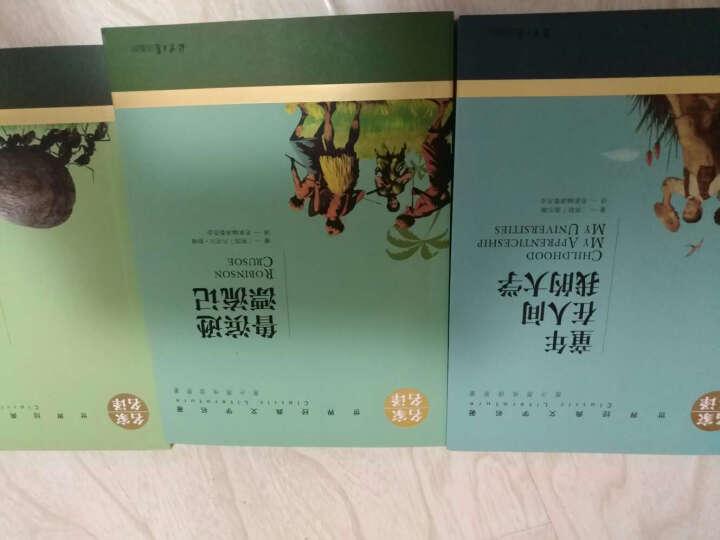 套装3册 鲁滨逊漂流记+童年在人间我的大学+昆虫记 世界文学小说名著  学生课外书 晒单图