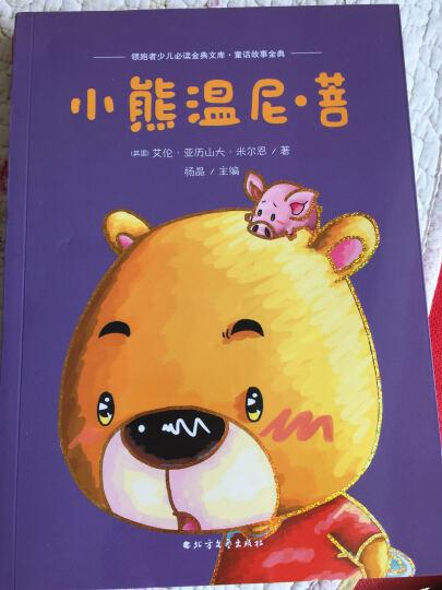 小熊温尼·菩 晒单图