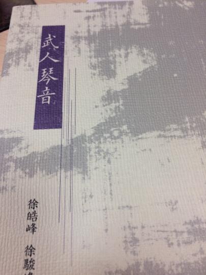 武人琴音 港台原版 徐皓峰 徐骏峰 中和出版 晒单图