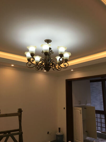 格雅诺 欧式吊灯 简约现代创意客厅餐厅卧室吊灯 简欧灯饰灯具0020 0020-6头朝上珍珠银 晒单图