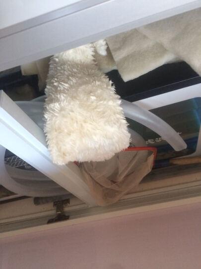 森森(sunsun)过滤棉鱼缸魔毯水族箱高密度生化棉过滤