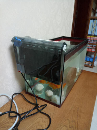 DEERA 鱼缸过滤器 水族箱用品 外置桶盒壁挂瀑布式 静音 H630适合50-60cm缸 晒单图