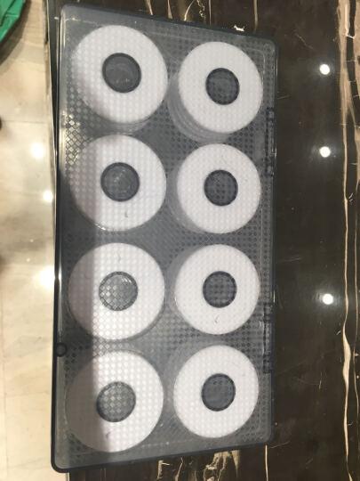 逸钓者鱼线主线正品特价鱼线套装利刃主线组钓鱼线进口原丝鱼线户外塘鱼线 5.4m八字环主线组(2卷装 强拉力) 4.5米 晒单图