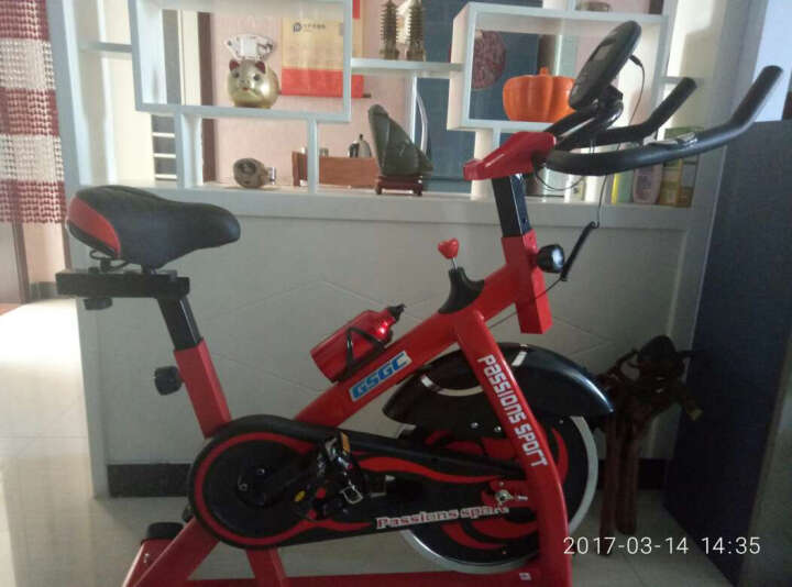 GSGC智能动感单车 健身车 家用静音减肥室内脚踏运动自行车 健身器材 S9005红色智能 晒单图