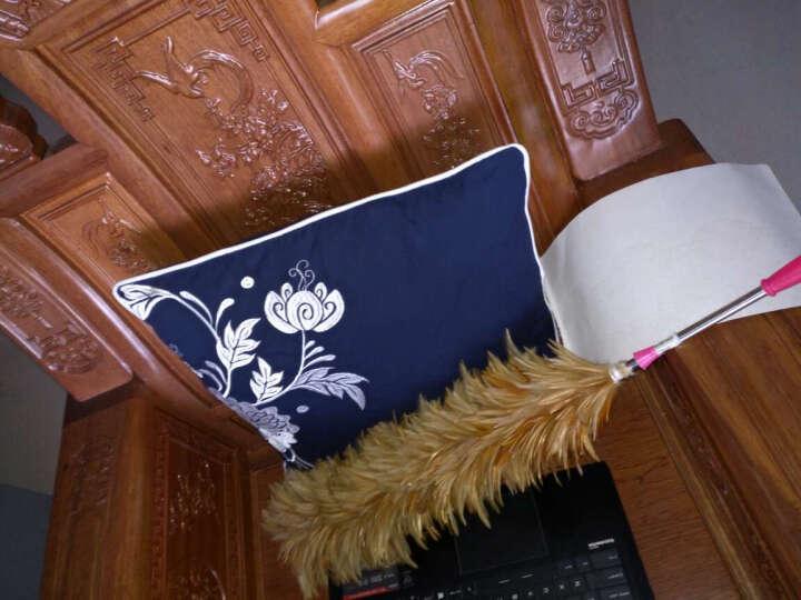 【3件8折】钟爱一生抱枕含芯全棉沙发靠垫办公靠枕床头午睡枕汽车护腰枕 青花系列 花心 45cm*45cm 晒单图