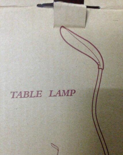趣玩 可循环充电LED节能叶子台灯 感应式开关台可调整亮度自由扭曲灯管台灯 开学礼物 晒单图