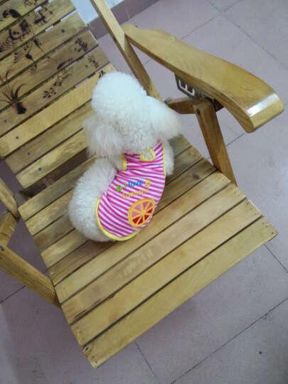 蓝荔 狗狗衣服春装透气宠物 背心 t恤居家款 服饰 印花T恤拼假背带四腿衣 军绿色 S号 晒单图