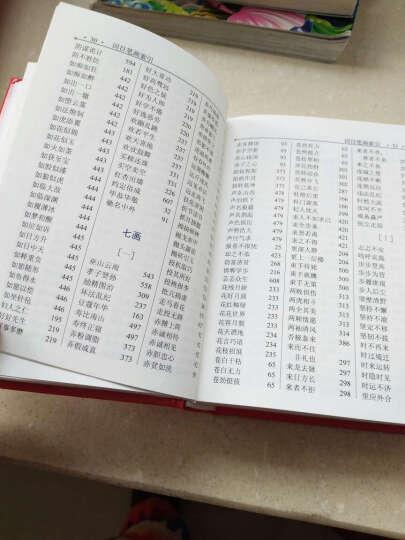 正版 学生实用新编成语字典 小学生多功能成语词典 一二三年级小学生语文实用工具书籍  晒单图