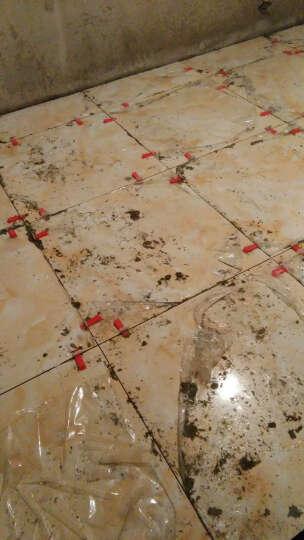 楼兰瓷砖 瓷片 釉面砖厨房瓷砖墙面砖卫生间瓷砖 300x600厨卫砖墙砖防滑瓷片 SA9569K1 73*600 晒单图