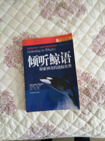 青少年探索与发现科普文库·倾听鲸语:探索神奇的虎鲸世界 晒单图