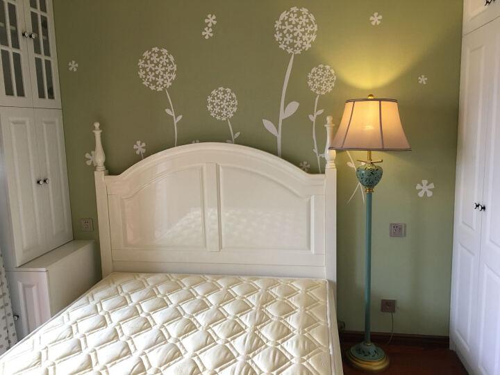 圣玛帝诺 欧式手绘落地灯 客厅卧室床头灯led暖光布艺落地式地灯 AV-1254黄色 晒单图