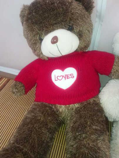 惜缘可爱毛衣熊熊 大号泰迪熊公仔熊布娃娃毛绒玩具
