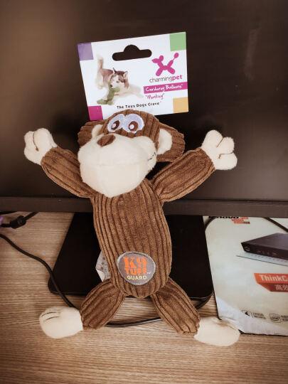 绮敏CharmingPet狗狗玩具泰迪金毛耐咬磨牙宠物发声玩具 欢乐猴 79981S 晒单图