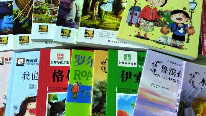 一粒种子的旅行 正版畅销书 荣获德国儿童图书Luchs大奖 德国青少年文学科普绘本 晒单图