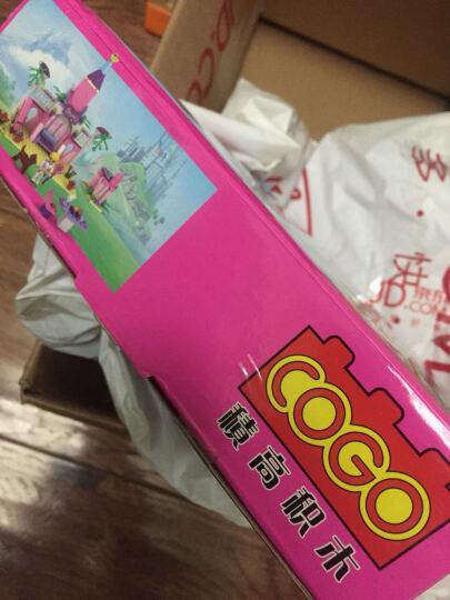 积高(COGO)魔法世界积木 梦幻小女孩生日节日礼物 童话益智启蒙立体拼装拼插模型玩具 13272 晒单图