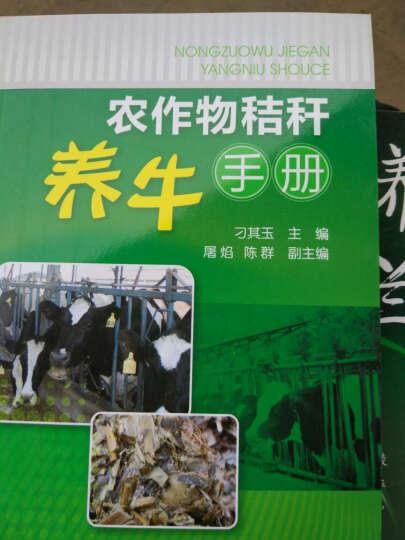 农作物秸秆养牛手册 养牛书籍 养牛知识大全书籍 肉牛养殖技术教程书籍 科学饲养肉牛 晒单图