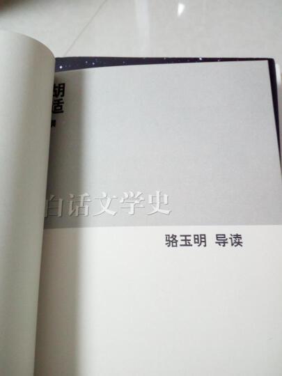 白话文学史 晒单图