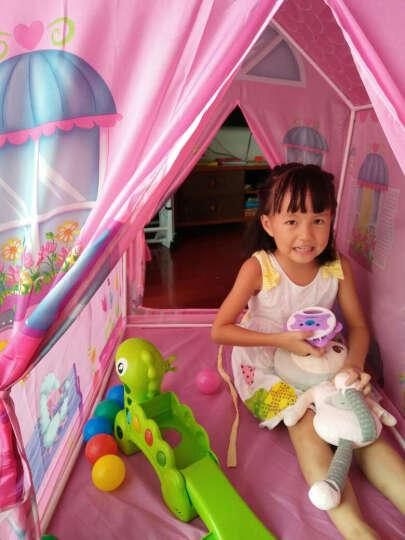 iPlay 儿童帐篷室内户外宝宝游戏屋男孩女孩家用玩具屋海洋球池公主屋包邮 送50个海洋球 农场的房子8164+50球+爬行垫 晒单图