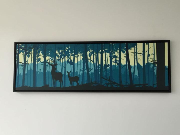 娜芸 床头画 装饰画客厅现代简约沙发背景墙壁画有框横幅挂画 幸福一家 大号150*40 晒单图