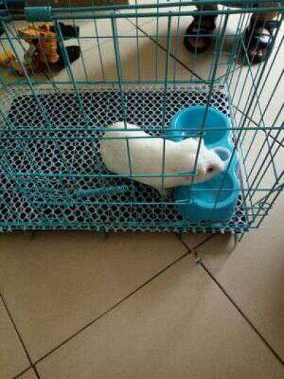 憨憨乐园 加粗狗笼子猫笼子宠物兔子笼兔笼鸽子笼鸟笼鸡笼(多色多规格) 蓝色套装 4号2.5尺76*47*57 晒单图